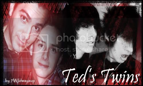 Ted's Twins Banner